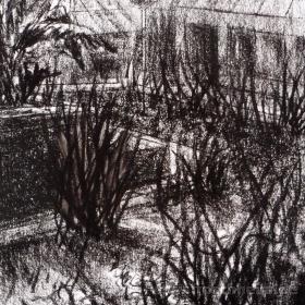 Im botanischen Garten 2