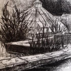 Im botanischen Garten 3